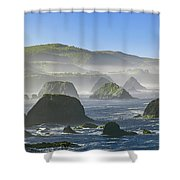 California Ocean Shower Curtain