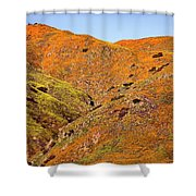 California Poppy Hills Shower Curtain