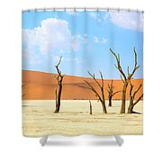 Camel Thorn Trees In Sossusvlei, Namibia Shower Curtain
