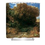 Campagna Landscape 1858 Shower Curtain