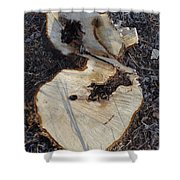 Canal Stumps-013 Shower Curtain