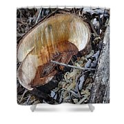 Canal Stumps-014 Shower Curtain