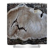 Canal Stumps-058 Shower Curtain