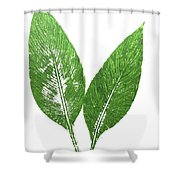 Cannas Leaves Shower Curtain