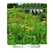 Canton Central 2 Shower Curtain