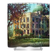 Capital Afternoon Shower Curtain
