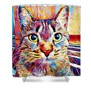 Cat 13 Shower Curtain