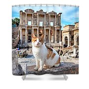 Cat In Front Of The Library Of Celsus Shower Curtain