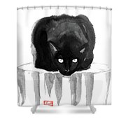 Cat On Wood Shower Curtain