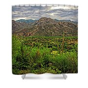 Catalina Foothills H1130 Shower Curtain