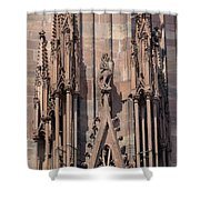 Cathedral Chimera Shower Curtain