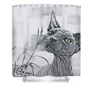 Catnip Shower Curtain
