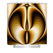 Celebrating Symmetry Shower Curtain