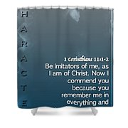 Character 1 11 1 2 Shower Curtain