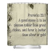 Character 22 1 Shower Curtain