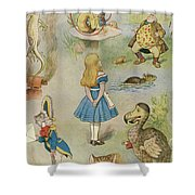 Characters From Alice In Wonderland  Shower Curtain