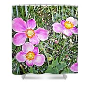 Chateau Montelena Garden 1 Shower Curtain