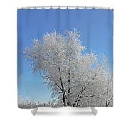 Cherohala Magic Shower Curtain