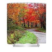 Chikanishing Road In Fall Shower Curtain
