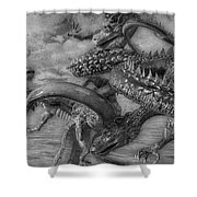 Chinese Dragons In Black And White Shower Curtain