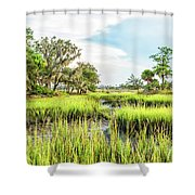 Chisolm Island - Marsh At Low Tide Shower Curtain