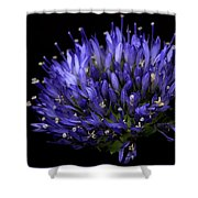 Chives Flower Shower Curtain