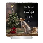 Christmas Squirrel Most Wonderful Time Of The Year Square Shower Curtain