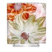Chrysanthemum Creativity Shower Curtain