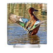 Cinnamon Teal Celebrating Shower Curtain