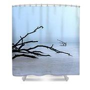 Coastal Drift Wood Shower Curtain by Tom Singleton