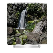 Coastal Falls Shower Curtain by Margaret Pitcher