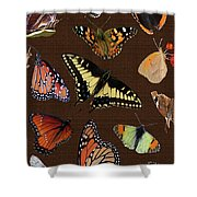Collage Of Ca Butterflies Shower Curtain