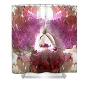 Color Hybrid Orchid Shower Curtain