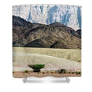 Color Layers In The Desert Shower Curtain by Arik Baltinester