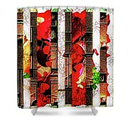 Colored Windows Shower Curtain