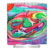 Colorful Abstraction Shower Curtain