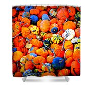 Colorful Tiny Pumpkins Shower Curtain