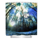 Colorful Trees Ix Shower Curtain