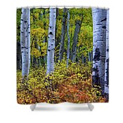 Colors Of October Shower Curtain by John De Bord