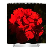 Colors Of The Neighborhood 16 Shower Curtain
