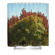 Colors Of The Neighborhood 25 Shower Curtain