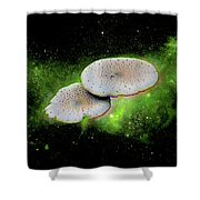 Combination Space Shower Curtain