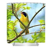 Common Yellowthroat Singing His Little Heart Out Shower Curtain