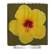 Cool Bloom Shower Curtain