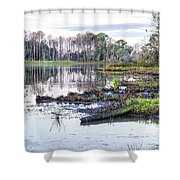 Coosaw - Early Morning Rice Field Shower Curtain