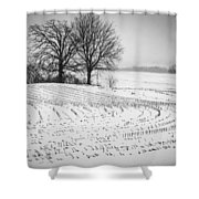 Corn Snow Shower Curtain by Kendall McKernon