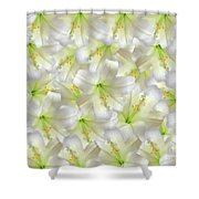 Cotton Seed Lilies Shower Curtain
