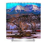 Cows And Hay On The Ground Shower Curtain