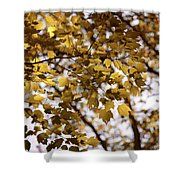 Cozy Fall Day Shower Curtain