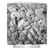 Cracked Earth Abstract Shower Curtain